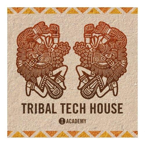 Tool room Academy Tribal Tech House