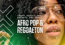 Diginoiz Afro Pop & Reggaeton