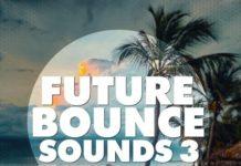 Big EDM Future Bounce Sounds 3