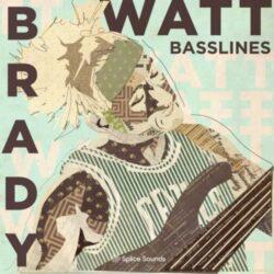 Brady Watt Basslines