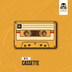 Vandalism Samples MIDI: Cassette