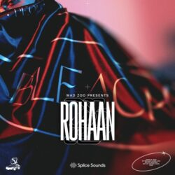 MAD ZOO presents Rohaan Sample Pack