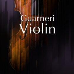NI Guarneri Violin v1.0.0 Kontakt Library